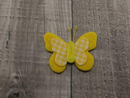 Motýl výsek žlutý č9
