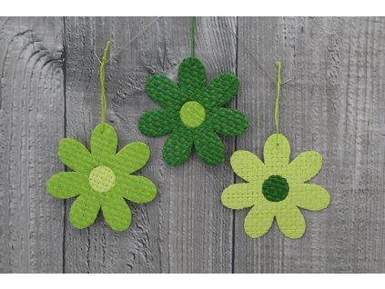 Květ papyrus malý zelený dvoubarevný