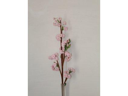 Větvička sakura růžová velká