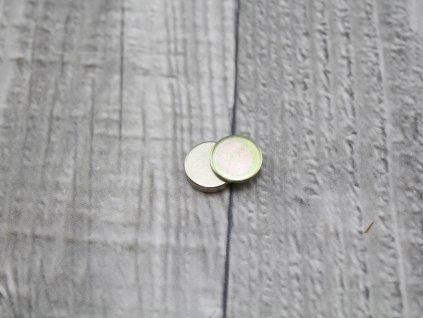Corsage magnet