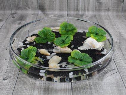 Vodní rostlina umělá 6 ks-Pistia