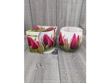 Svíčka ve skle-tulipán