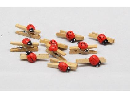 Kolíček dřevěný s beruškou