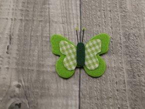 Motýl výsek zelený č11