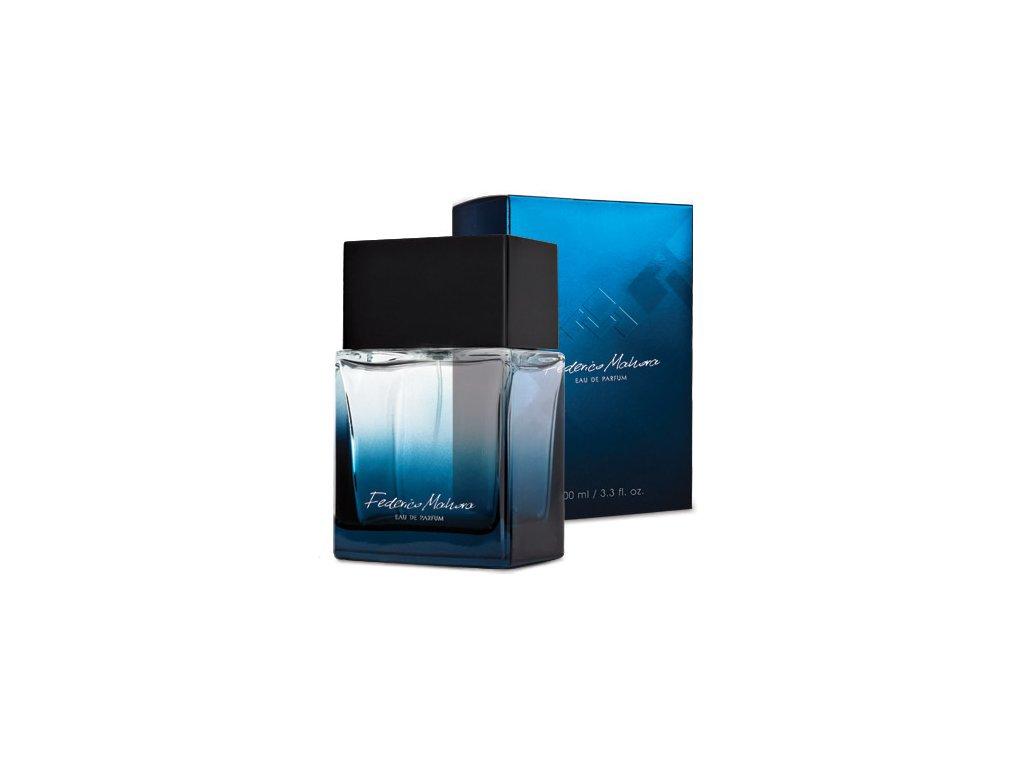 Pánská parfémovaná voda FM Group LUXURY 195