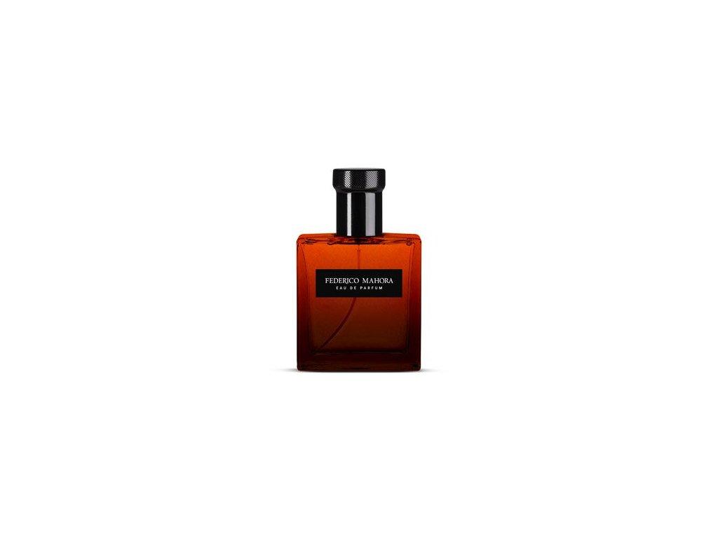 Pánská parfémovaná voda FM Group LUXURY 301