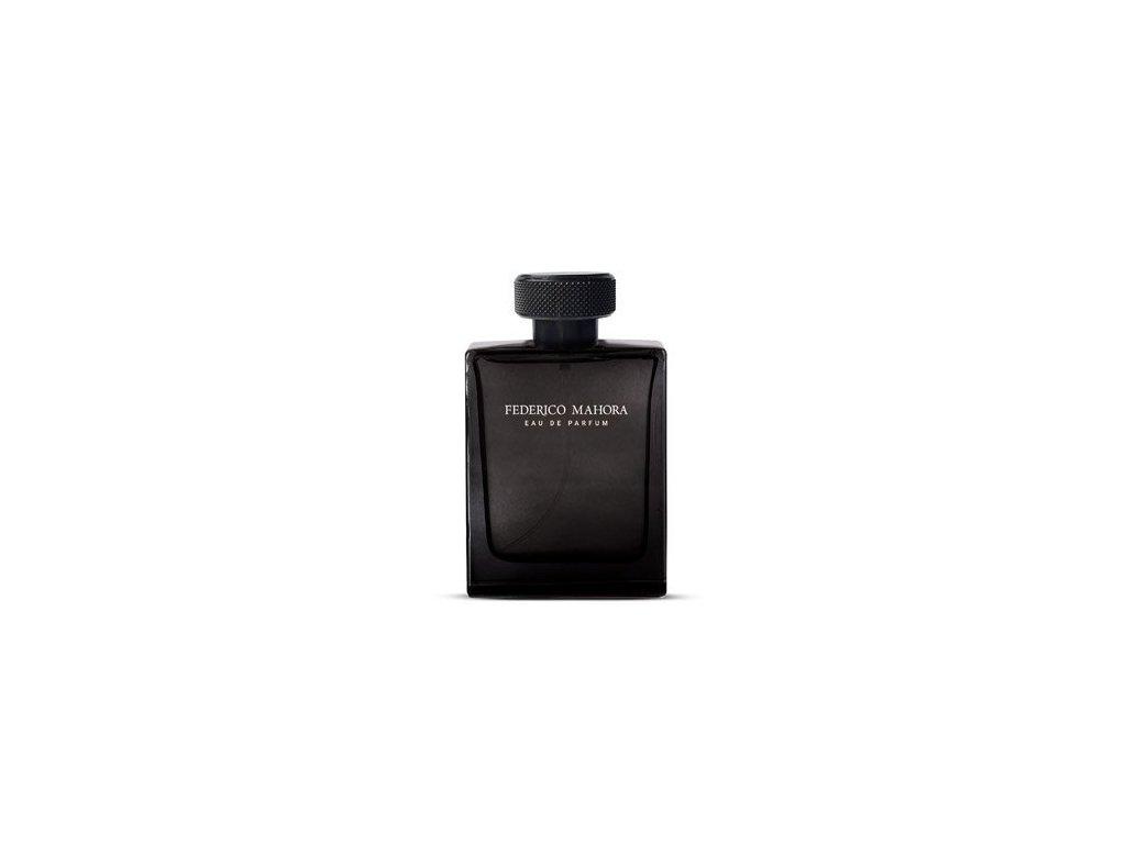 Pánská parfémovaná voda FM Group LUXURY 335