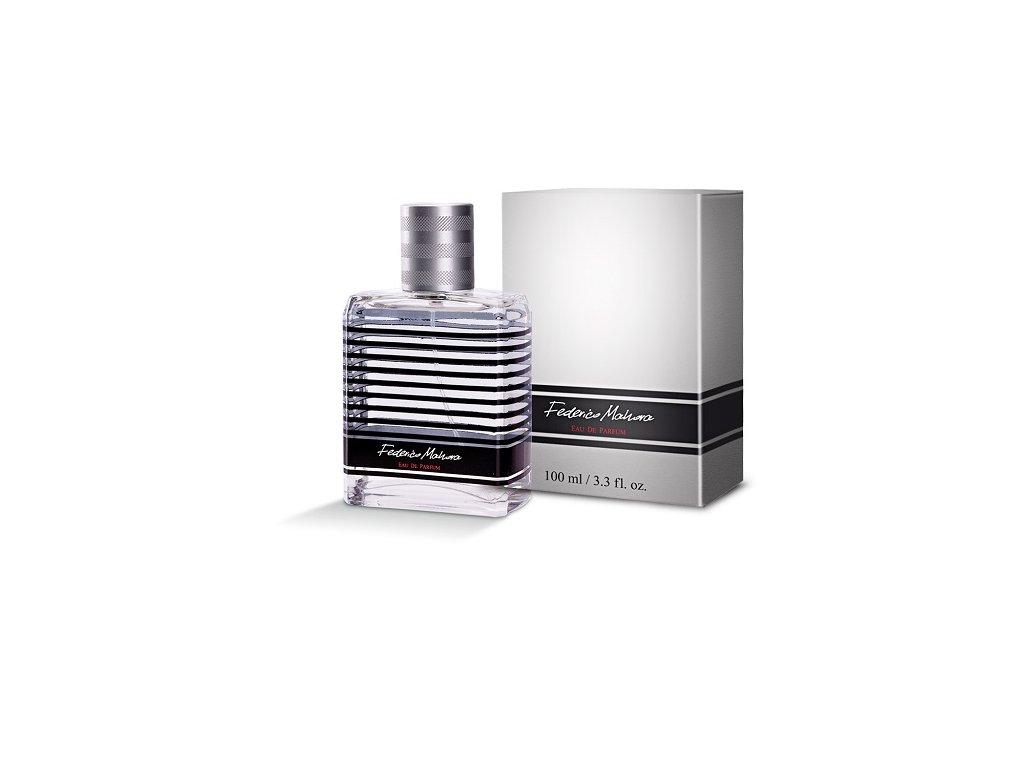 Pánská parfémovaná voda FM Group LUXURY 336