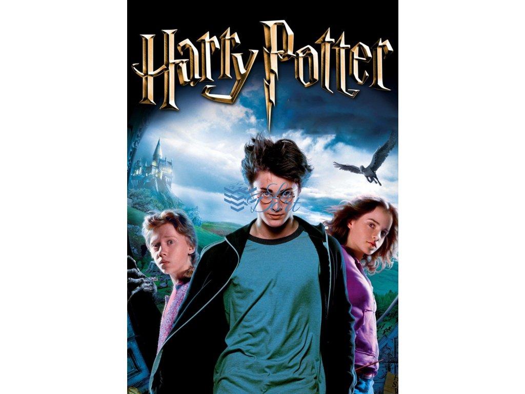 00255 Harry Potter