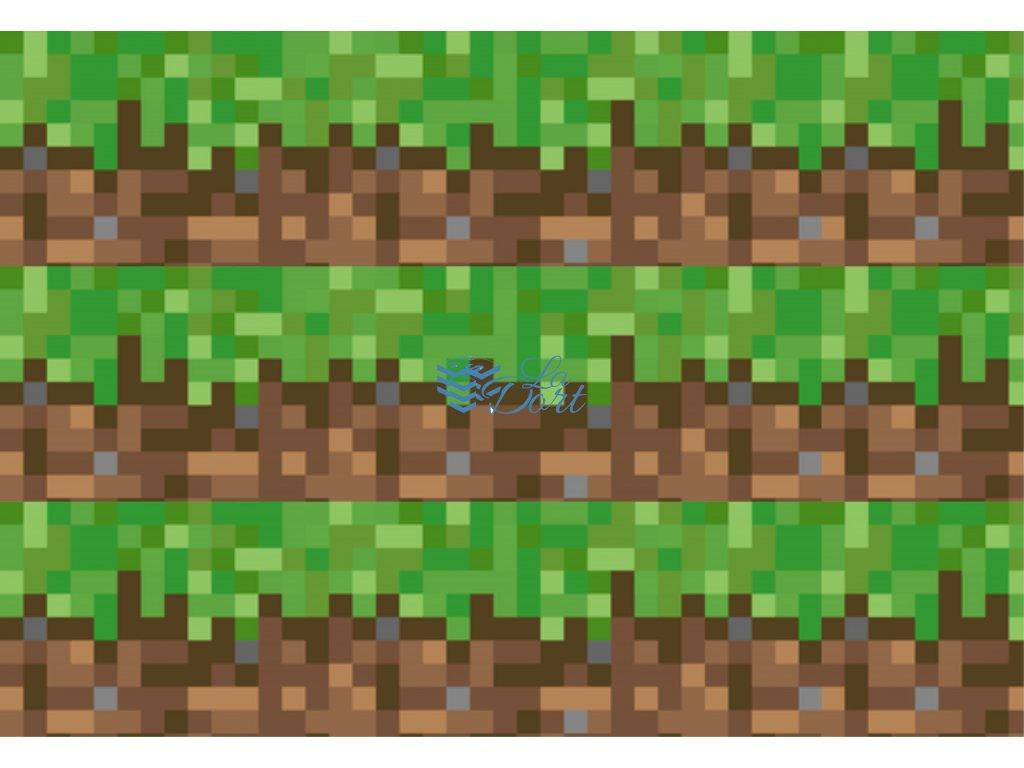 Minecraft - A4 - 00187