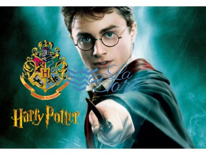 00258 Harry Potter