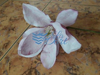 Magnolie - 1x A4 - Wafer paper - 9 okvětních lístků 2 květy - 00102