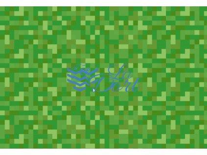 Minecraft - A4 - 00186