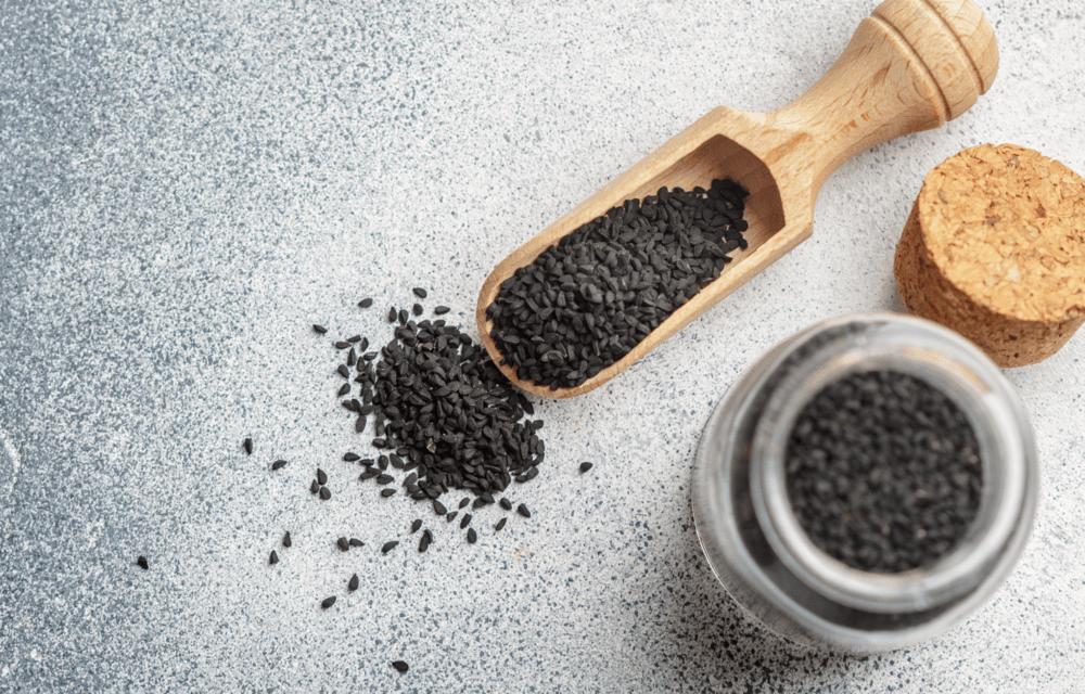 cernucha-seta-recepty