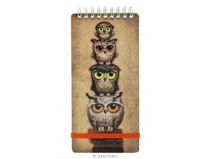 SANTORO zápisník Book Owls