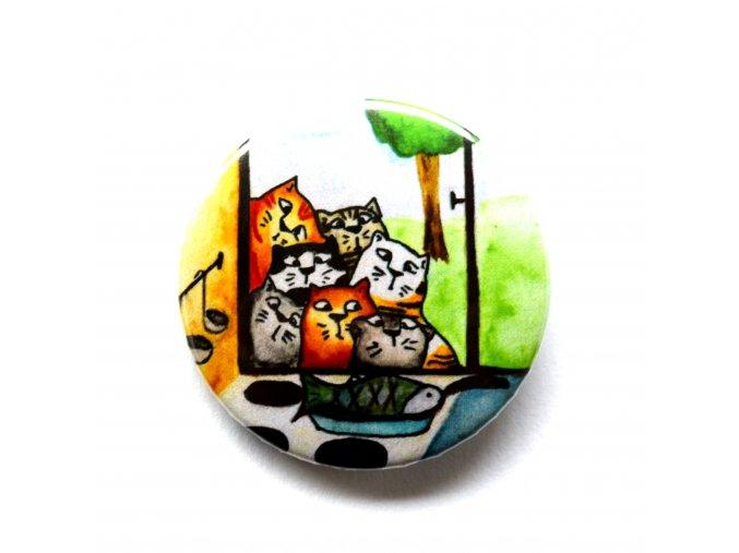 kočky placka