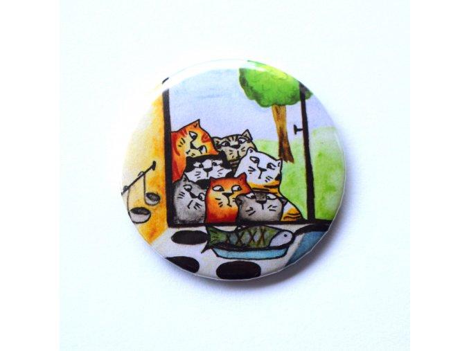 Kočky zrcátko