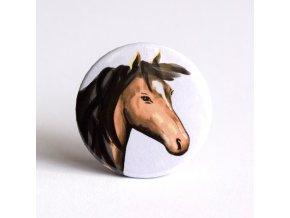 Kůň placka