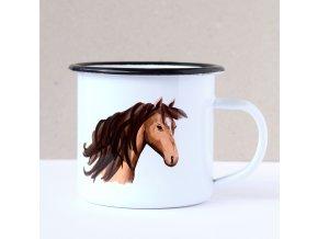 kůň plecháček