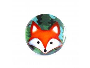 liška zrcátko