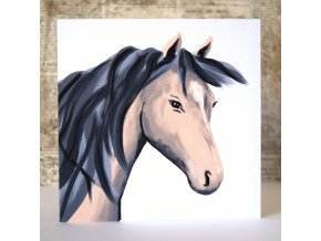 kůň přání