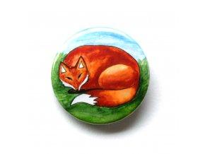 Spící liška zrcátko