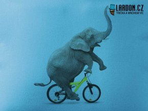 slon kolo motiv tricko nahled