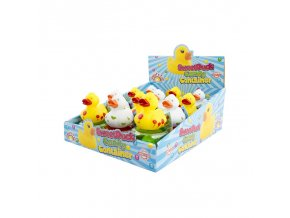 sweet duck candy container