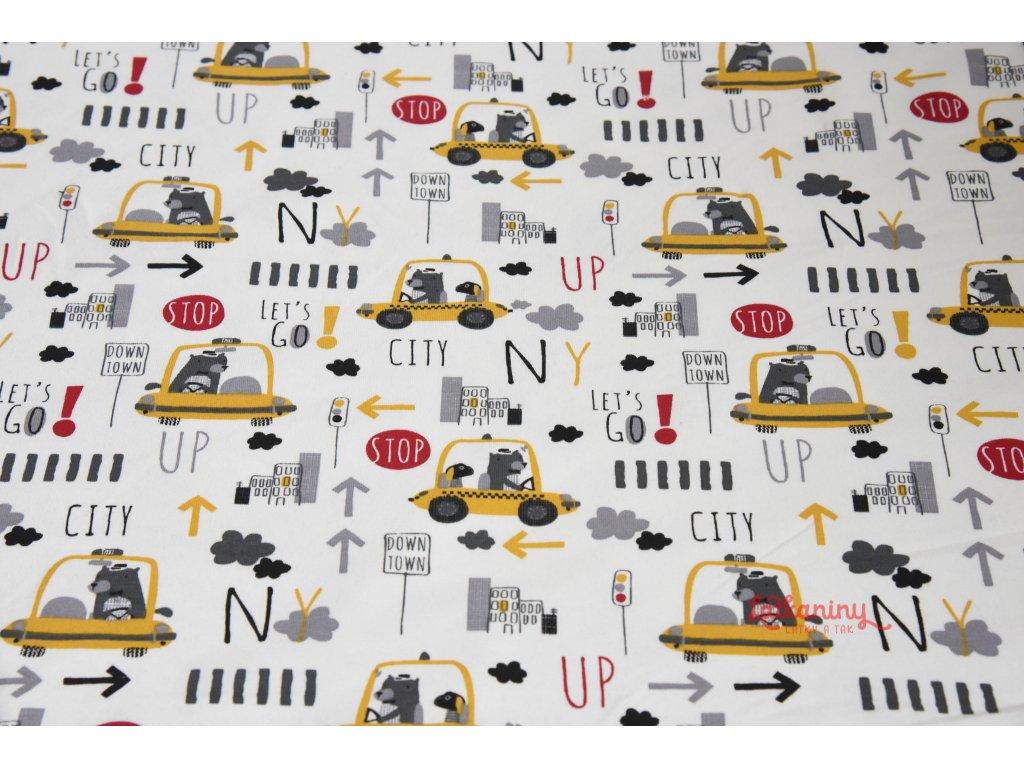 Uplet zvireci taxi (4)