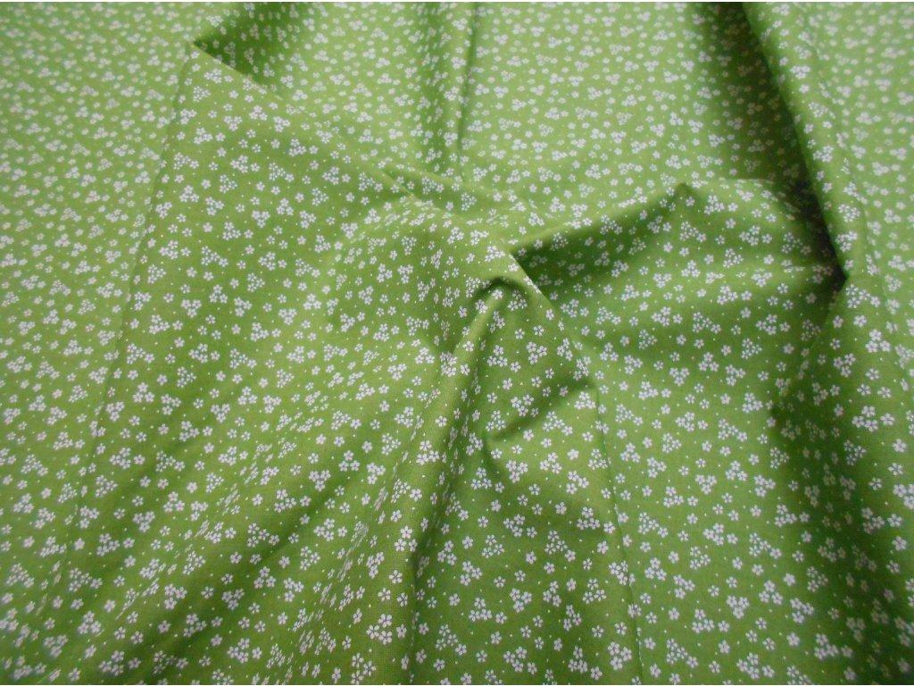 bílá kytička na zelené