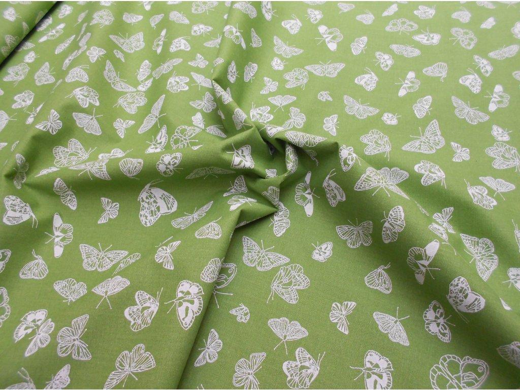 bílé motýli na zelené