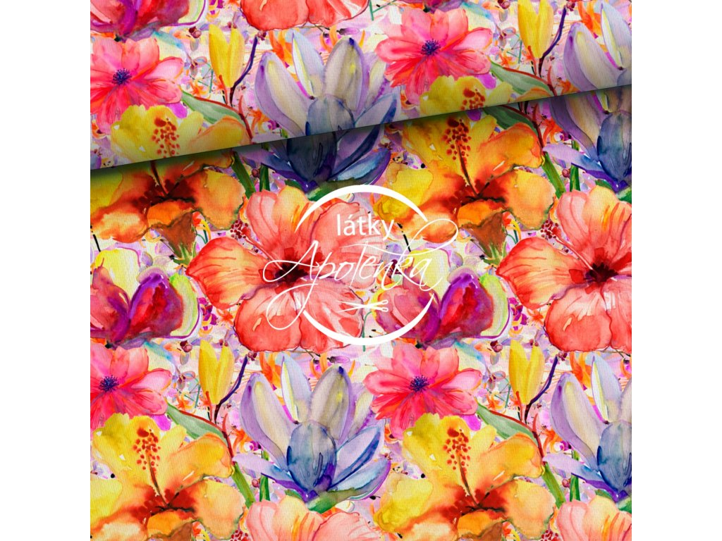kolorowe tropiki