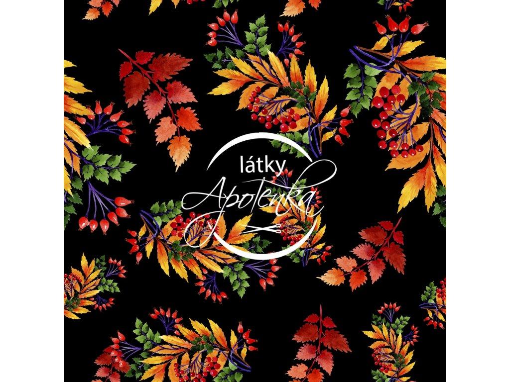 barevné listí na černé