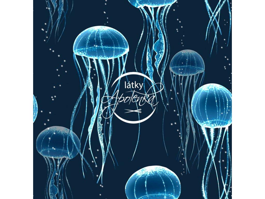 Úplet medúzy 200g