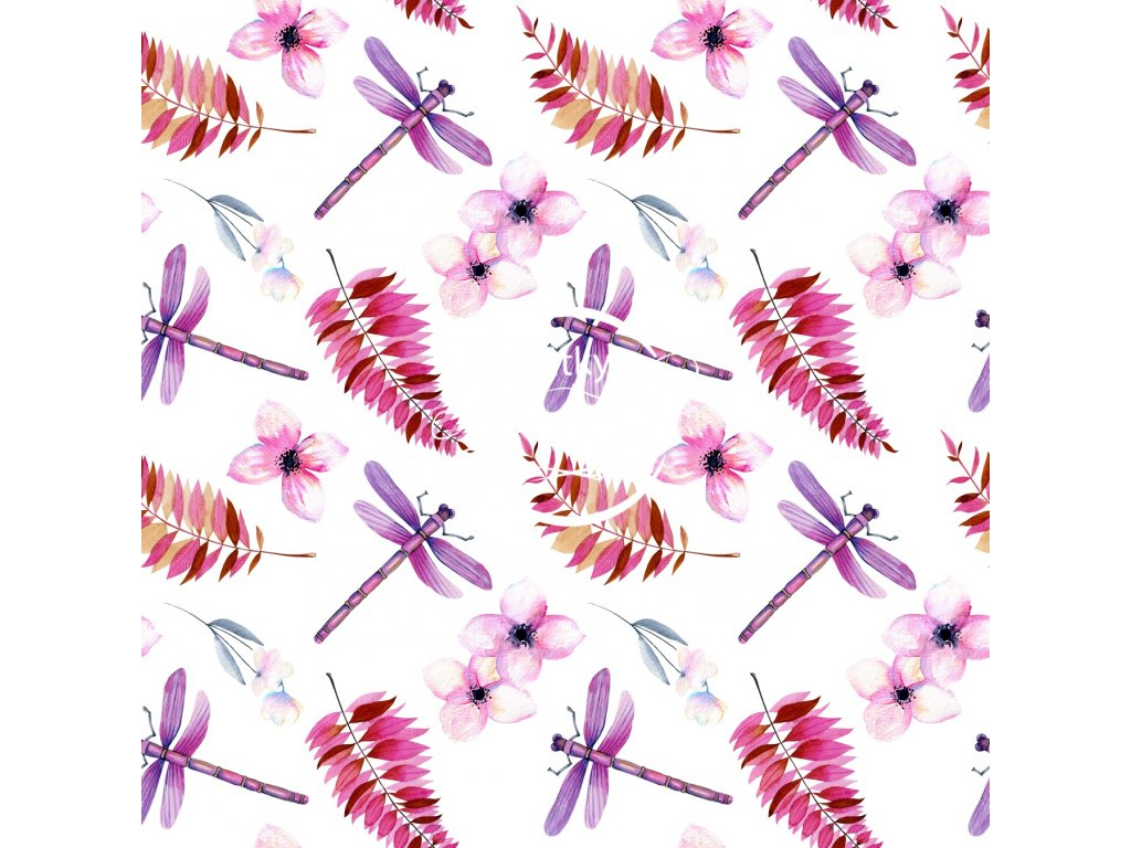 fialové vážky a kapradí