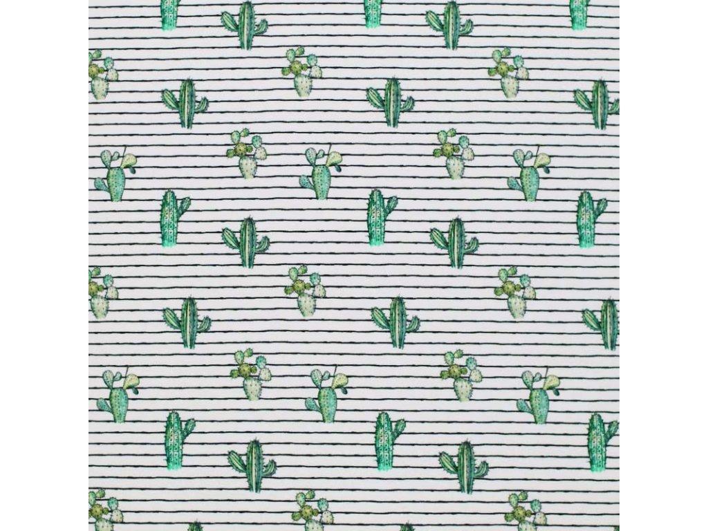 Jersey Fabric Stripy Cactus 1 800x800