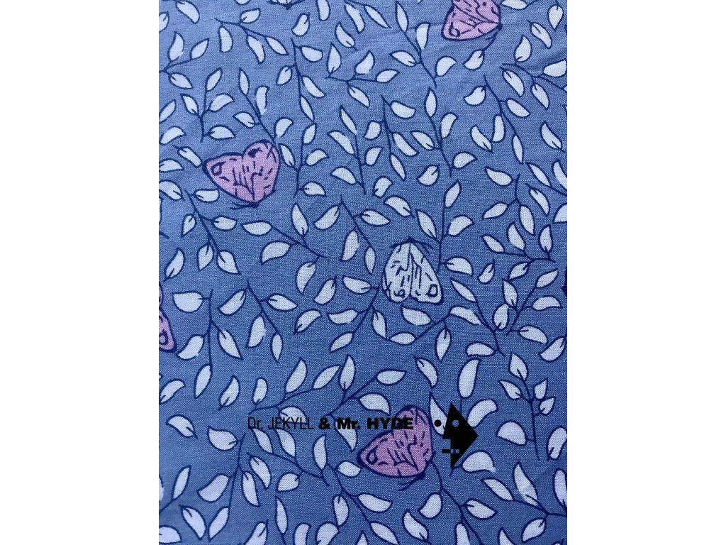 Motýlci modrá