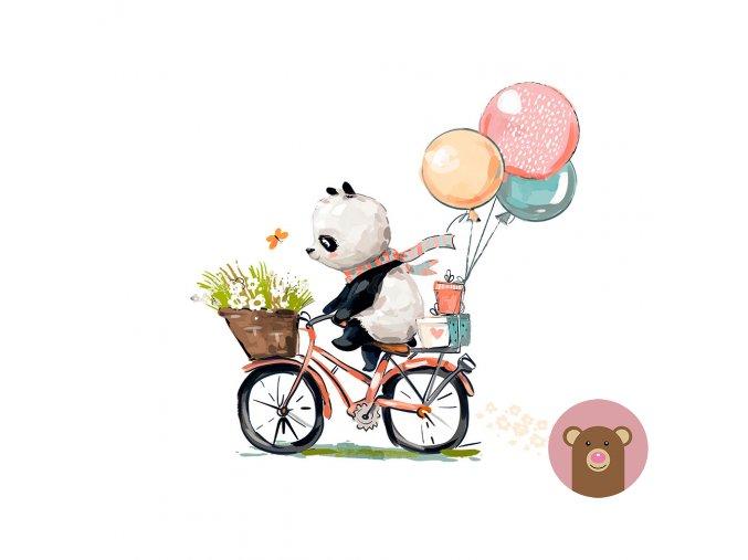 ftpanel panda bike
