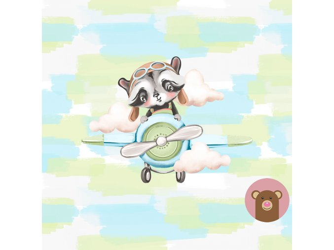 ft panel little boys raccoon in a plain