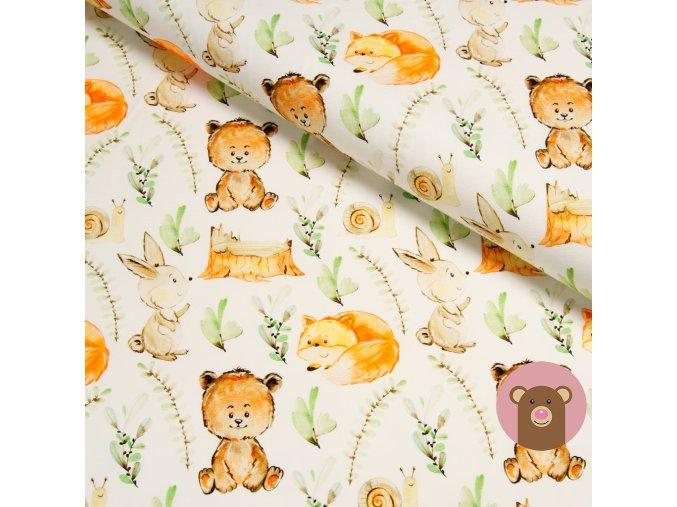 úplet medvídci a lišky