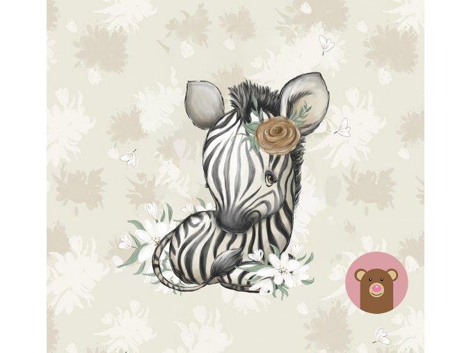 ft panel african baby zebra