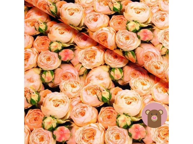 6070 teplakovina oranzove ruze