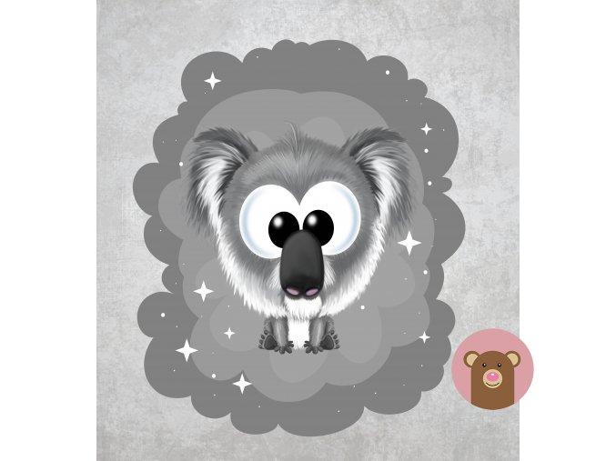 koala šedá