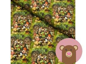 4070 2 teplakovina mickey jungle