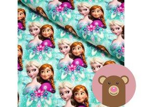 teplákovina Anna a Elsa na mint