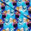 teplákovina Kreslená Anna a Elsa