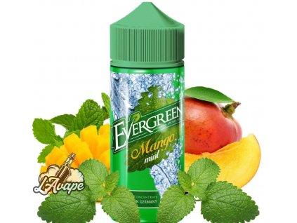 Evergreen Mango Mint SnV 30 ml aroma ve 120 ml Chubby gorila lahvičce. lavape.cz