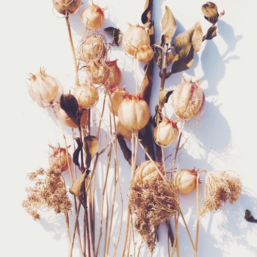 Kvety, vetvičky a prízdoby