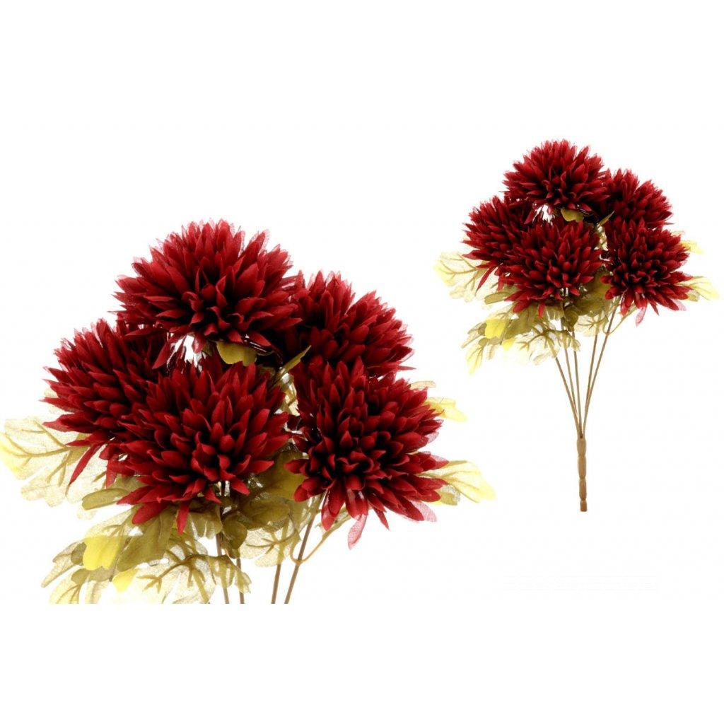 Chryzantéma kytica,5-hlavá, bordová,11/44cm