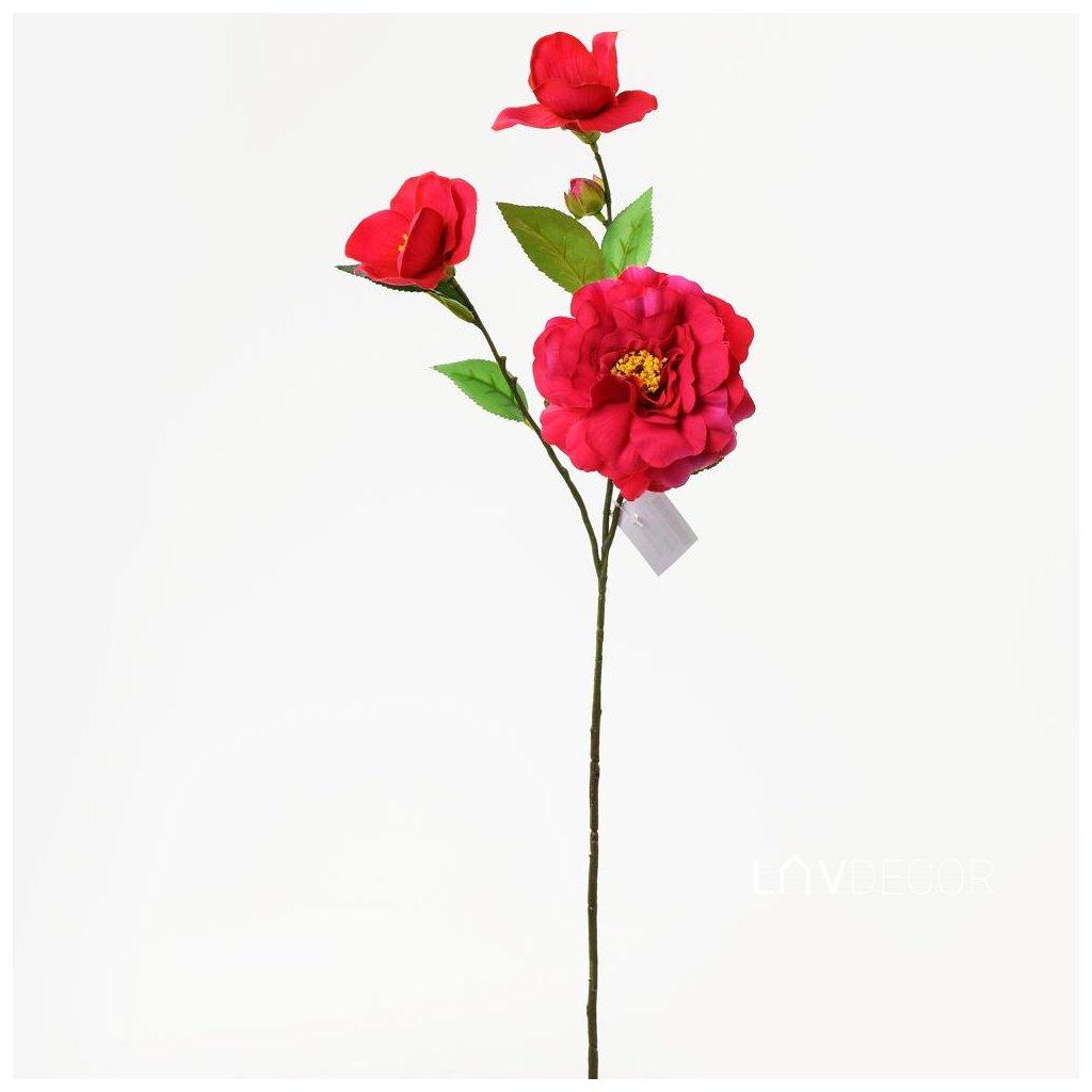 KS CAMÉLIA RUŽOVÁ 60cm